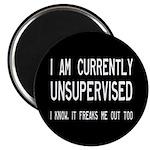 I Am Currently Unsupervised Magnet