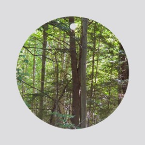 Scenery Of Trees Ornament (Round)