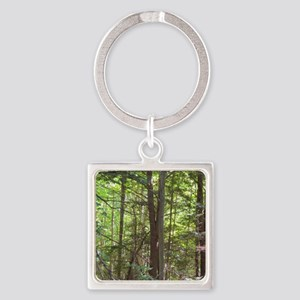 Scenery Of Trees Keychains