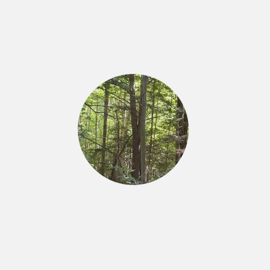 Scenery Of Trees Mini Button