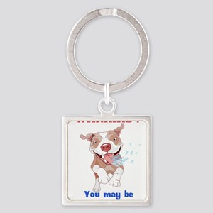 Warning Pitbull Licked to death Keychains