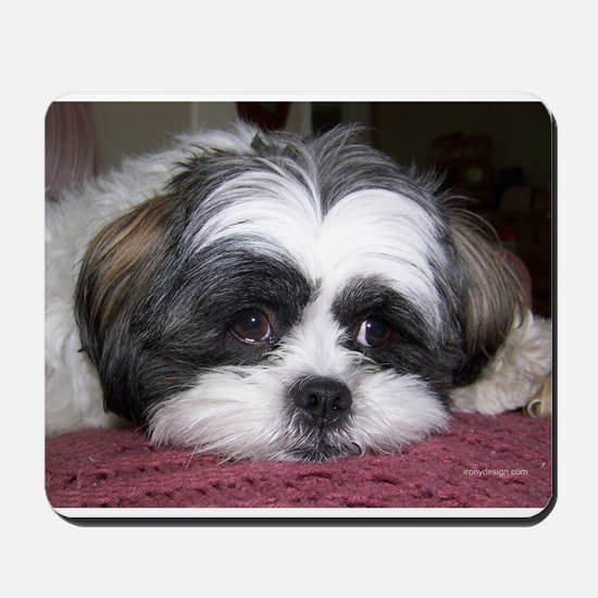 Shih Tzu Dog Photo Image Mousepad
