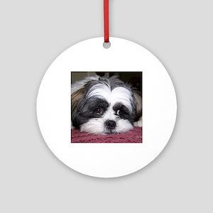 Shih Tzu Dog Photo Image Ornament (Round)