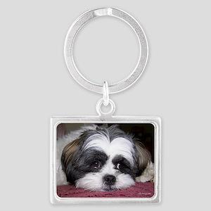 Shih Tzu Dog Photo Image Keychains