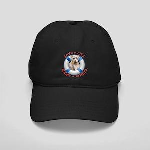 Life Preserver Fawn Pitbull Black Cap