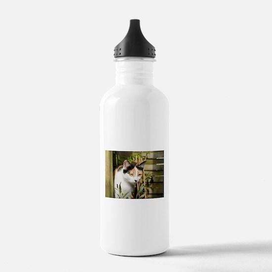 Calico Cat Chiara Water Bottle