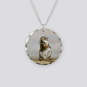 Gopher_2014_1101 Necklace Circle Charm