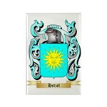 Hetzel Rectangle Magnet (100 pack)
