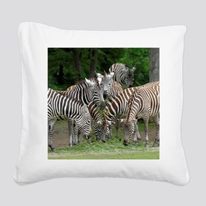 Zebra_2014_1101 Square Canvas Pillow