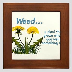 Dandelions Weed Framed Tile
