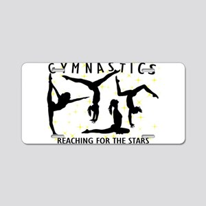 Gymnastics Reaching For The Aluminum License Plate