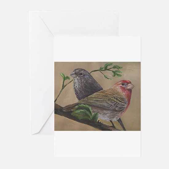 Cute House finch Greeting Cards (Pk of 10)
