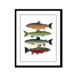 4 Char fish Framed Panel Print