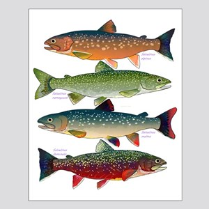 4 Char fish Posters