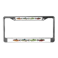 4 Char fish License Plate Frame