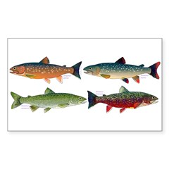 4 Char fish Decal