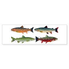4 Char fish Bumper Bumper Sticker
