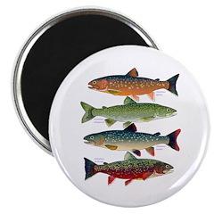4 Char fish Magnets