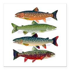 4 Char fish Square Car Magnet 3