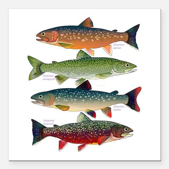 "4 Char fish Square Car Magnet 3"" x 3"""