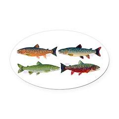 4 Char fish Oval Car Magnet