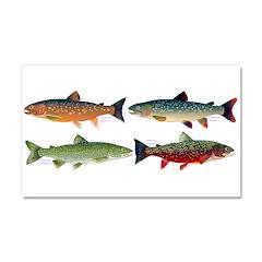 4 Char fish Car Magnet 20 x 12