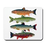 4 Char fish Mousepad