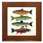 4 Char fish Framed Tile