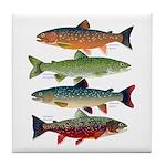 4 Char fish Tile Coaster