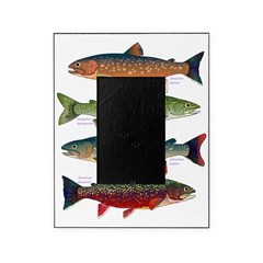 4 Char fish Picture Frame