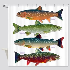 4 Char fish Shower Curtain