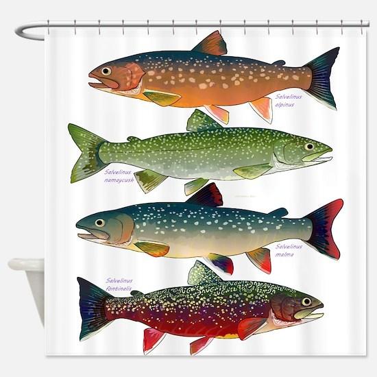 4 Char fish Shower Curtain