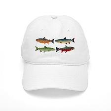 4 Char fish Baseball Cap