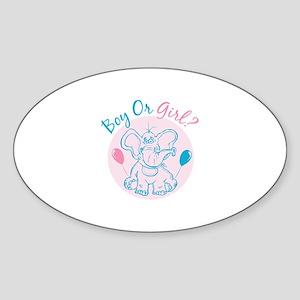 Boy or Girl Sticker