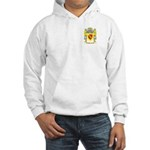 Herrera 3 Hooded Sweatshirt