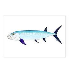 Xiphactinus audax fish Postcards (Package of 8)