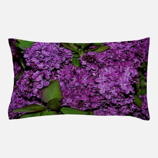 Lilac Pillow Case