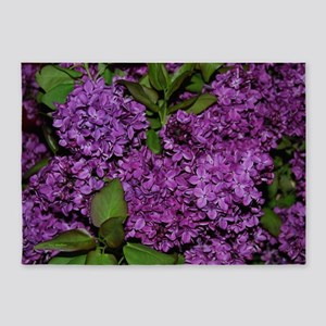 Lilac 5'x7'Area Rug