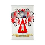 Henriquet Rectangle Magnet (100 pack)