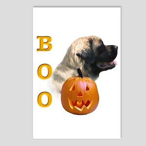 Mastiff(flf) Boo Postcards (Package of 8)