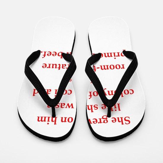 17 Flip Flops