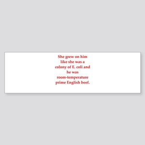 17 Bumper Sticker