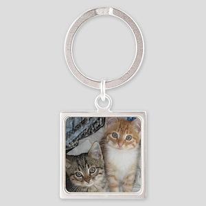 Tabby Kitty Cats Keychains