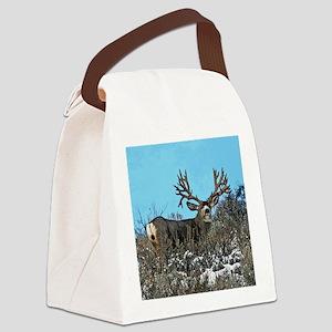 Trophy mule deer buck b Canvas Lunch Bag