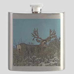 Trophy mule deer buck b Flask