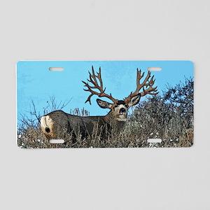 Trophy mule deer buck b Aluminum License Plate