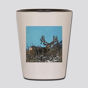 Trophy mule deer buck b Shot Glass