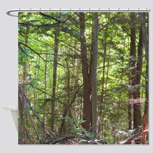 Scenery Of Trees Shower Curtain