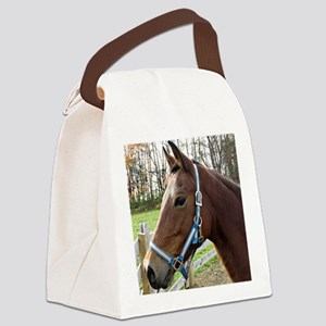 Morgan Horse in Field Canvas Lunch Bag