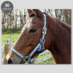 Morgan Horse in Field Puzzle